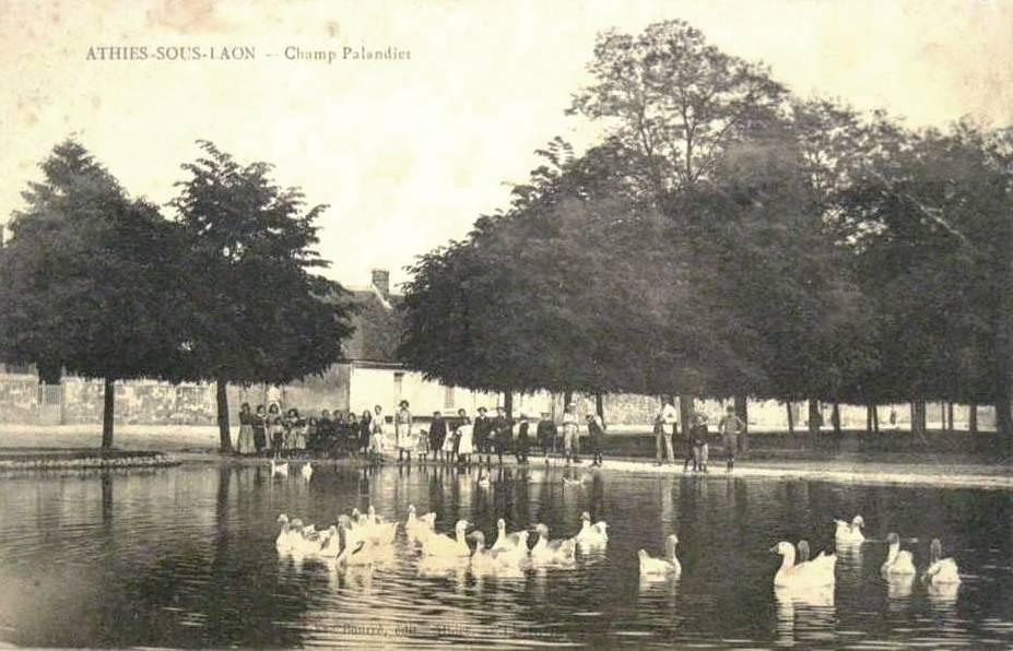 Athies-sous-Laon (Aisne) CPA champ palandier