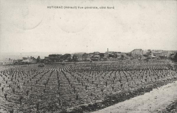 Autignac (Hérault) CPA Vue générale