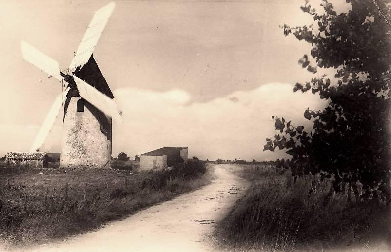 Barbâtre (Vendée) Moulin à vent du Gois
