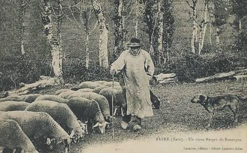 Barre (Tarn) CPA vieux berger