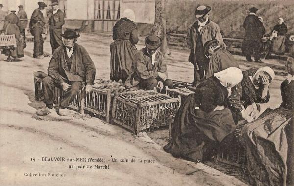 Beauvoir-sur-Mer (Vendée) Place du marché CPA