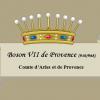 Boson VII de Provence