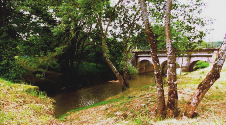 Châtillon-en-Bazois (Nièvre) Mingot