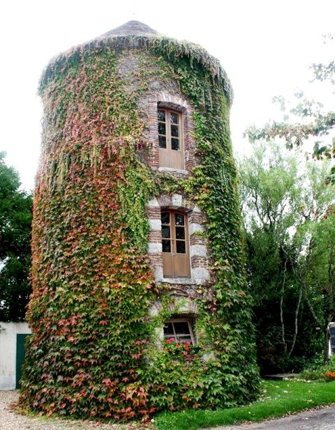 Courtenay (45) Château de Vaulxfin, pigeonnier