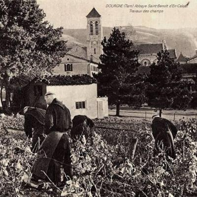 Dourgne (Tarn) CPA Abbaye Saint Benoit d'En-Calcat, moines au travail