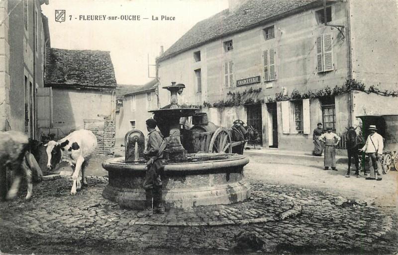 Fleurey-sur-Ouche (Côte d'Or) La place de la fontaine CPA