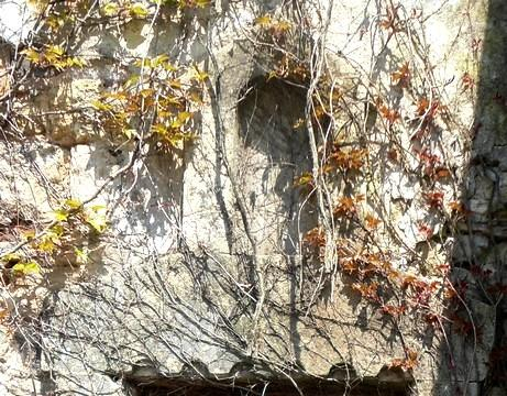Gissac (Aveyron) Niche vôtive
