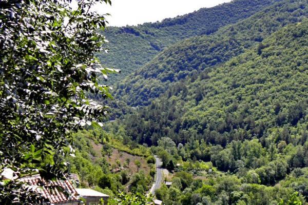 La Bastide-Pradines (Aveyron) Panorama