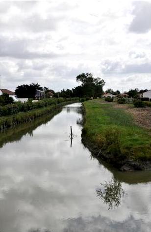 Le Perrier (Vendée) Le marais