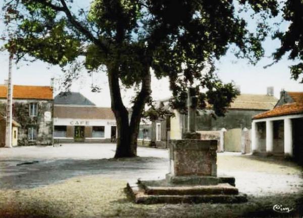 Le Perrier (Vendée) Place du marché CPA