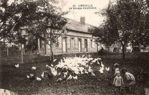Limpiville (Seine Maritime) Ferme CPA