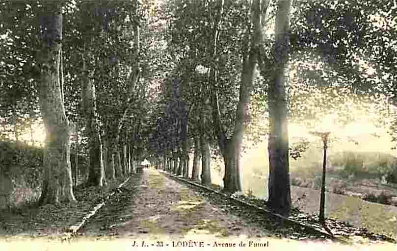 Lodève (Hérault) L'avenue de Fumel CPA