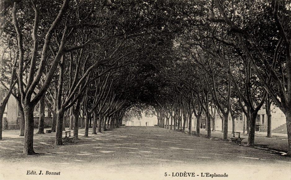 Lodève (Hérault) L'esplanade CPA