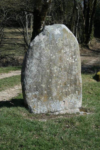 Murat-sur-Vèbre (Tarn) Statue-menhir de Plos