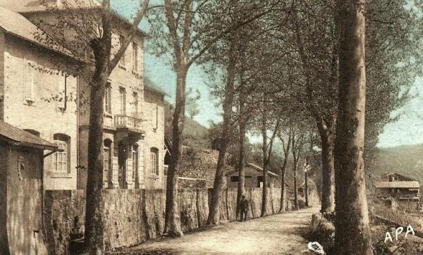 Saint-Félix-de-Sorgues (Aveyron) CPA l'avenue et les écoles