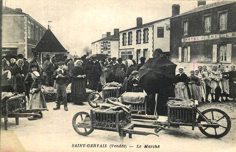 Saint-Gervais (Vendée) Le marché CPA