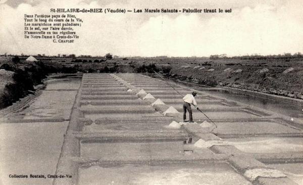 Saint-Hilaire-de-Riez (Vendée) Les marais salants CPA