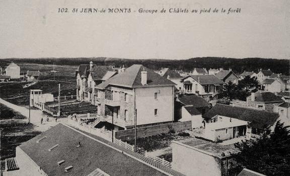 Saint-Jean-de-Monts (Vendée) Les chalets au pied de la forêt CPA