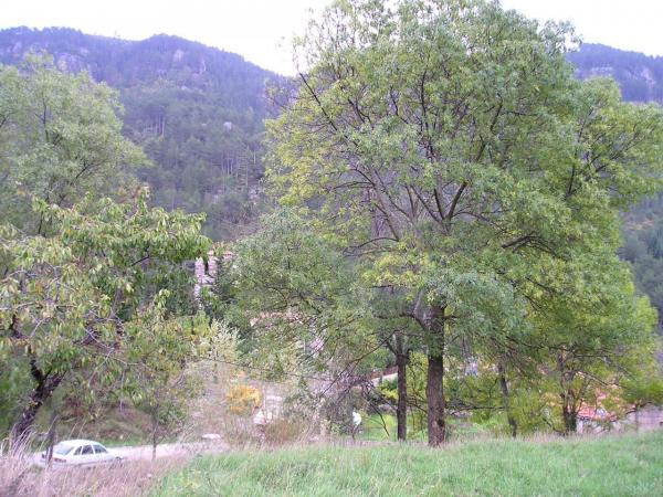Saint-Pierre-de-la-Fage (Hérault) Parlatges