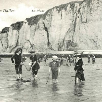 Les Grandes-Dalles (76)