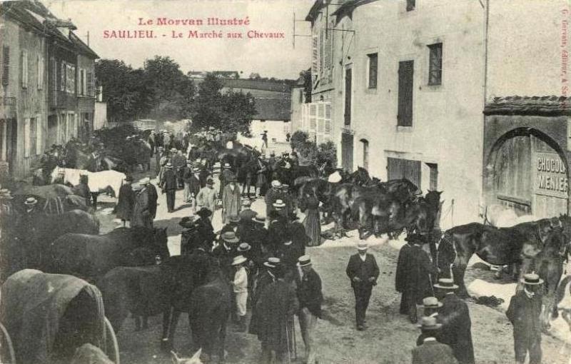 Saulieu (Côte d'Or) Le marché aux chevaux CPA