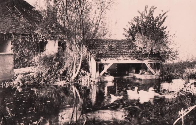 Seignelay (89) Le lavoir CPA