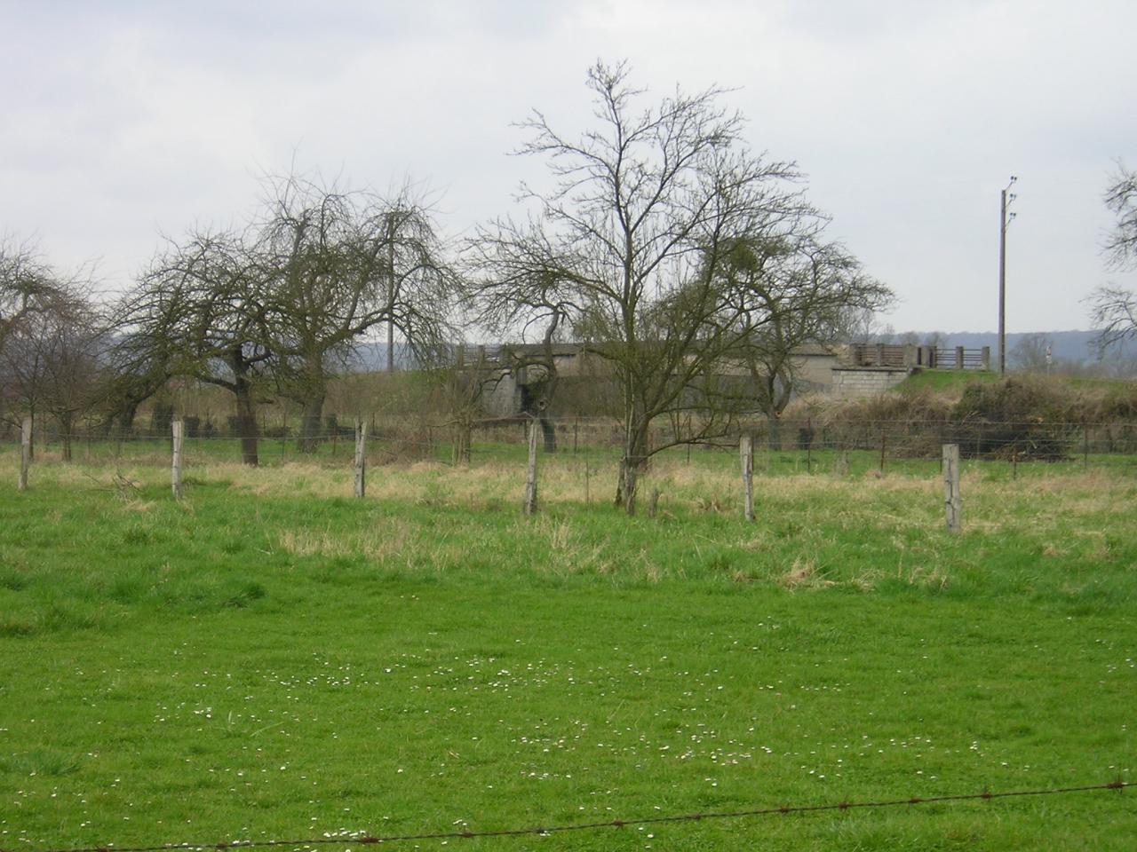 Stenay (Meuse) Cervisy, le terrain 2005