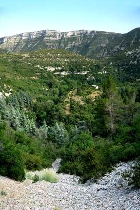 Vissec (Gard) Les gorges de la Vis