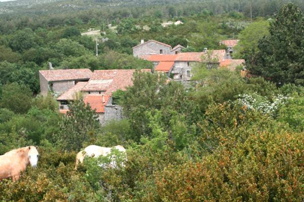 Vissec (Gard) Régagnas