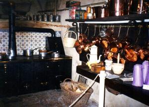 1995 noel au chateau de la ferte saint aubin