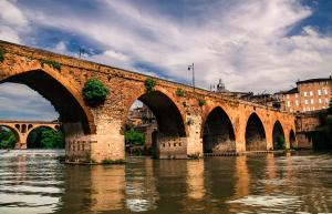 Albi tarn le pont vieux