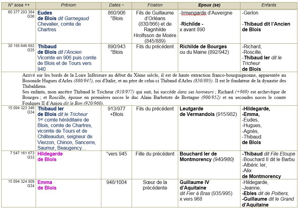 Blois 41 ancetres