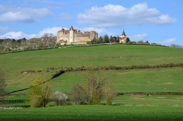 Chateauneuf en auxois cote d or le chateau