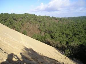Dune de pilat en 2005