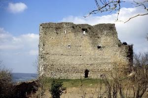Vaudemont meurthe et moselle le chateau