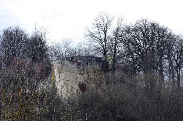 Vignory haute marne le chateau tour canonniere
