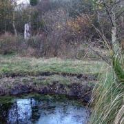 Amblainville oise marais du rabuais
