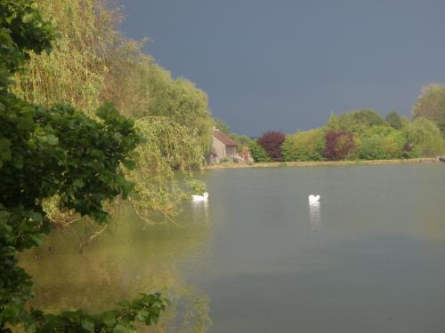 Arthel (Nièvre) L'étang