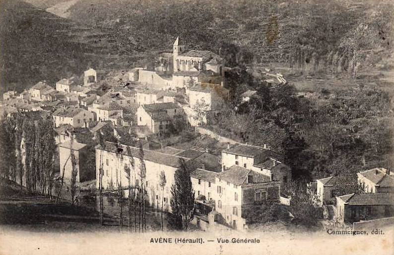 Avène (Hérault) Vue Générale en 1908 CPA