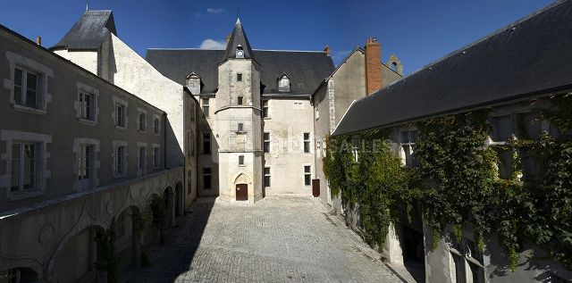 Beaugency (45) Château Dunois