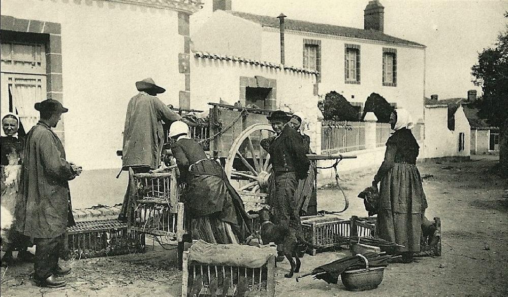 Beauvoir-sur-Mer (Vendée) Marchand de poulets CPA