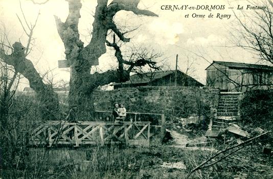 Cernay-en-Dormois (51) La fontaine et l'arbre de Rosny CPA