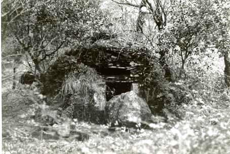 Dourgne (Tarn) CPA Source du Taurou