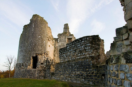 Fère-en-Tardenois (Aisne) le château