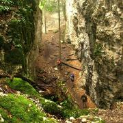 Ferrette 68 le chemin menant a la grotte des nains