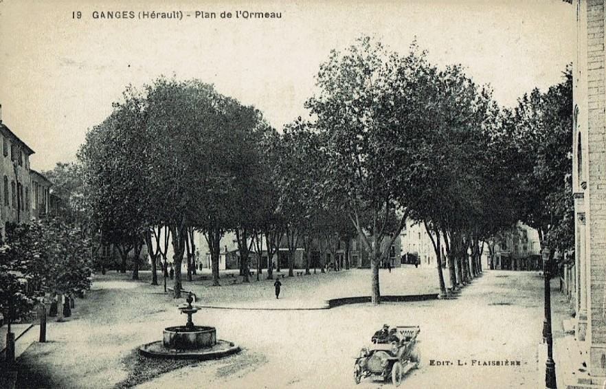 Ganges (Hérault) Le plan de l'Ormeau CPA