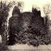 Jaudrais (28) Les ruines du château CPA