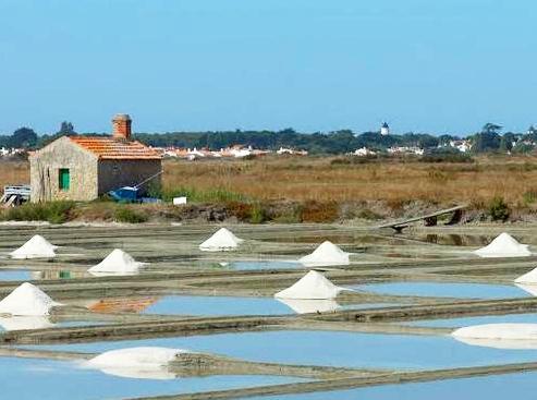 La Guérinière (Vendée) Marais salant