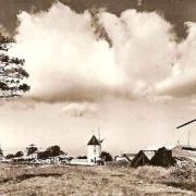 La Guérinière (Vendée) Moulins CPA
