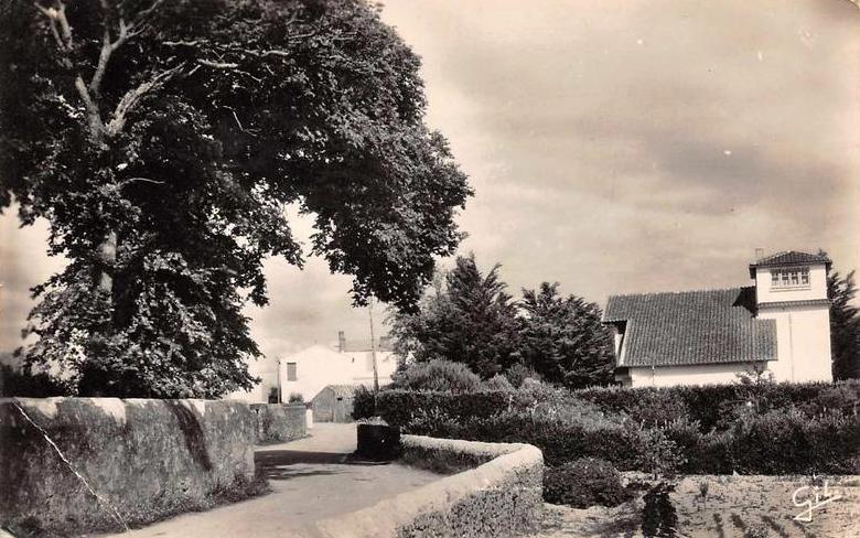 La Guérinière (Vendée) Une rue CPA